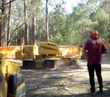 stump-grinding-img1